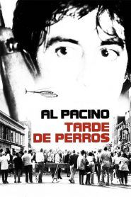 Tendencias Pagina 8 Zoowoman 1 0 Full Movies Online Free Full Movies Dog Day Afternoon