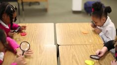 Video: Preschool Lesson Plan for Digging for Fossils
