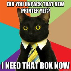 did you unpack that new printer yet i need that box now - Business Cat