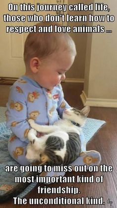 cute baby holding a cute kitten, what're you waiting for?