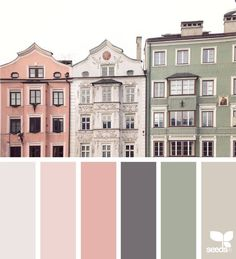 Design Seeds celebrate colors found in nature and the aesthetic of purposeful living. Colour Pallette, Colour Schemes, Color Combos, Vintage Colour Palette, Vintage Color Schemes, Paint Color Palettes, Pink Palette, Modern Color Palette, Design Seeds
