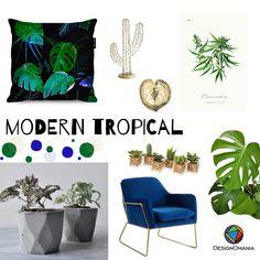 Wnętrzarskie inspiracje dla wszystkich, którzy kochają rośliny! Modern Tropical