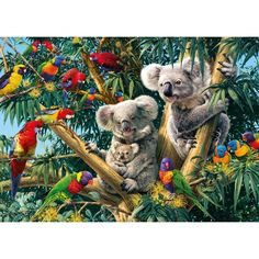 Gibsons Discoveries Cuddly Koalas 1000 piece wildlife jigsaw puzzle