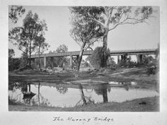 Echuca and Surroundings. The Murray Bridge.Image of the Murray River Bridge at Echuca, taken by A.J. Campbell in the 1894. Part of a large collection of images depicting mainly aspects of the natural environment of south-eastern Australia, created by Archibald James Campbell between 1890 and 1915. South Australia, Western Australia, James Campbell, Murray River, Steamers, Tasmania, Paddle, Bridge, Environment