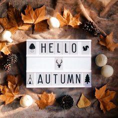Foto de @alivigo Si no llega el otoño , habrá que inventarlo  #juegolvm #igerscs #otoño #autumn #lightbox #hojas