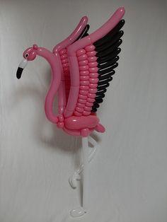 フラミンゴ flamingo 2013.7.31