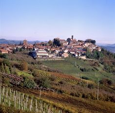Verduno, Italy in the Piedmont region. Home of Wonderful Barolo Wines.