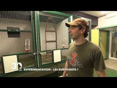 Expérimentation animale : les survivants ! - YouTube