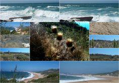 Collage van strand in Portugal. 100km boven Lissabo vind je Sao Marthino do Porto, Salir, en ook de stranden Pria Salgado