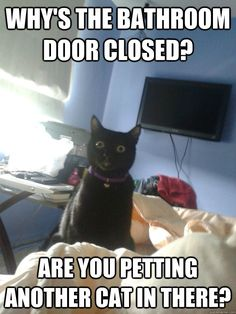 Why's the bathroom door closed?