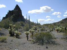 Yuma AZ Map | Arizona Methamphetamine Trafficker Sentenced to 20 Years