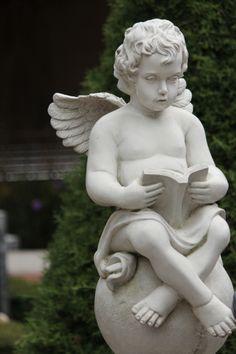 semua membuthkan yang namanya ilmu, sampai-sampai malaikat pun juga perlu untuk membaca guna menambah ilmu