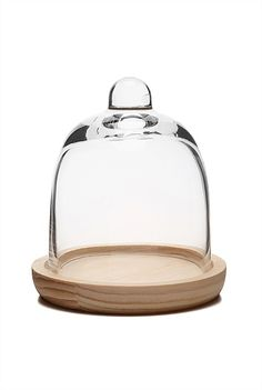 Small Glass Cloche from Witchery Glass Domes, Home Accessories, Mirror, House Styles, Tableware, Stuff To Buy, Lovely Things, Pine, Christmas