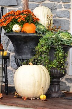 Welcome to the… FALL PORCH TOUR This year' porch is a celebration of fall's glorious colors! Pumpkins galore and so much more. Come and join me on the porch… This fall's porch decor is colorful, asymmetrical and has a windswept look… It looks like fall blew in and spilled down my front steps! Each side more »