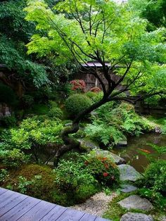 asian garden Peacefully Japanese Zen Garden Gallery Inspirations 32 is part of Japan garden - This is Peacefully Japanese Zen Garden Gallery Inspirations 32 image, you can read and see an Small Japanese Garden, Japanese Garden Design, Japanese Gardens, Japanese Garden Landscape, Japanese Plants, Japanese Garden Backyard, Small Trees For Garden, Small Patio, Asian Garden