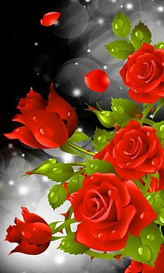 "Search Results for ""red rose hd live wallpaper"" – Adorable Wallpapers Beautiful Flowers Wallpapers, Beautiful Rose Flowers, Pretty Wallpapers, Exotic Flowers, Rose Flower Wallpaper, Flowers Gif, Butterfly Wallpaper, Beau Gif, Good Morning Roses"