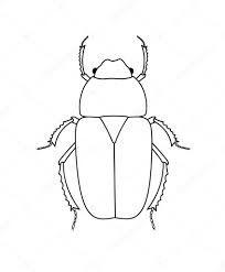 Dibujo Escarabajo Buscar Con Google Escarabajo Escuela De Verano