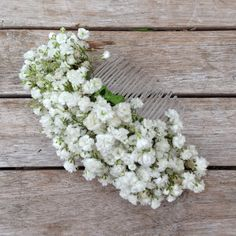 gypsophila hair comb - Google Search