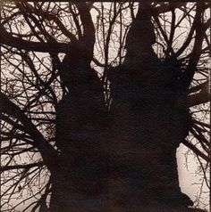 Tree  hand made Van Dyke Brown photograph by lidijaivaneksila, $80.00
