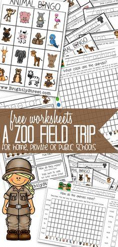 Zoo Field Trip Packet