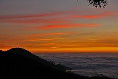 6處賞點 阿里山夕陽雲海盡收眼底 | ETtoday 東森旅遊雲 | ETtoday旅遊新聞(旅遊)