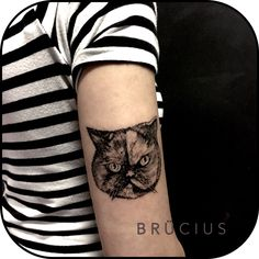 #BRÜCIUS #TATTOO #EUROPE #tour #SanFrancisco #brucius #natural #science #engraving #etching #sculptoroflines #dotwork #blackwork  #penandink #lines #nature #cat  #dontfuckwithme #gatto #Italy #PURO #Milan