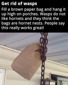 Spiders, Ants, and Wasps OH MY! Try these natural insect repellents to get rid of those pesky insects. Do you have a way of getting rid of pesky insects? Tell us below in the comment! Simple Life Hacks, Useful Life Hacks, Get Rid Of Wasps, Wasp Traps, Fly Traps, Diy Pest Control, Bug Control, Bug Off, Mosquitos