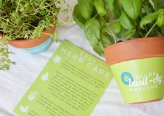 Terra Cotta Plant Wrappers Free Printable Gift Idea