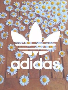 Adidas fond d& Wallpaper Pâquerettes - Adidas Backgrounds, Tumblr Backgrounds, Cute Backgrounds, Wallpaper Backgrounds, Iphone Wallpaper, Nike Wallpaper, Tumblr Wallpaper, Cool Wallpaper, Hipster Wallpaper