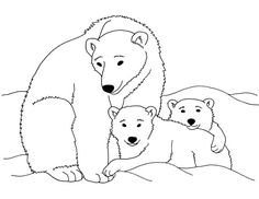 Awesome Polar Bear Coloring Pages Printable Gallery