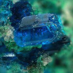 Chalcomenite in assoc. with malachite and torbernite in clear blue crystal. Musonoi Mine, Kolwesi, Katanga, Congo