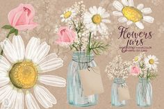 Watercolor chamomile baby breath jar by GrafikBoutique on Creative Market