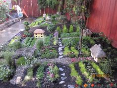 Overview of Nancy's fairy and gnome garden. photo by @Kimchi Kawaii