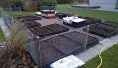 Ny köksträdgård i villa