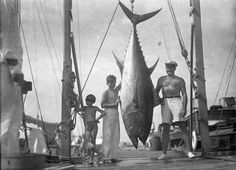 """(Circa 1930s) Ernest Hemingway and his sons, Patrick """"Mouse"""" and Jack """"Bumby"""" Hemingway, posing with a tuna at the docks in Bimini, Bahamas."""