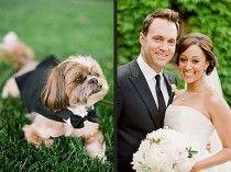Mariage en plein air - Tamera Mowry a impliqué son chien comme porteur d'anneau ! Le Shih Tzu marchait dans l'allée revêtu d'un smoking ^^