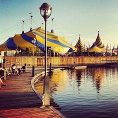 Le Cirque du Soleil, Old Montreal Photo by polk65 • Instagram