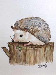 Igel original-Aquarell by LilianeG Hedgehog Art, Hedgehog Drawing, Cute Hedgehog, Hedgehog Tattoo, Hedgehog Illustration, Illustration Art, Watercolor Animals, Watercolor Paintings, Watercolours