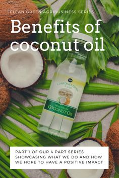 We present to you, part 1 of our 4-part series showcasing what we do and how we hope to have a positive impact on the environment around us! Learn about the benefits of coconut right here! Extra Virgin Coconut Oil, Benefits Of Coconut Oil, Green Cleaning, Caribbean, The Creator, Environment, Positivity, Learning, Food
