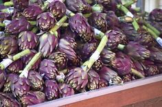 Paris Color: Fresh-picked Purple