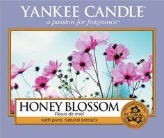 Honey Blossom - Peggys - Yankee Candle & kleinkariert Ballonwelt Fachhändler