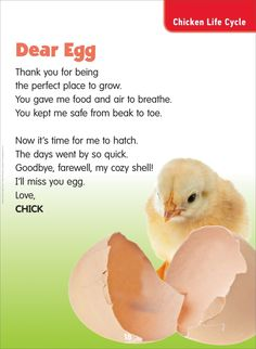 Dear Egg: Science Poem