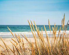Coastal prints beach photography ocean beach scene 8x10 nautical decor golden teal sand dunes waves blue sky summer