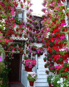 21 Ideas for Dream Garden                                       This is so pretty.
