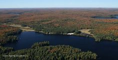 Cache Lake in Algonquin Park on September 25, 2013. Source Lake is shown background left and Canisbay Lake is background right.  Fall aerial images of Algonquin Park's fall colour. www.algonquinpark.on.ca