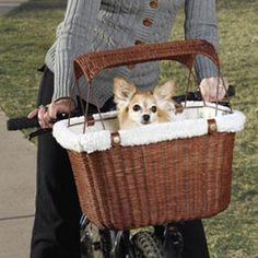 Bicycle basket for my Chi