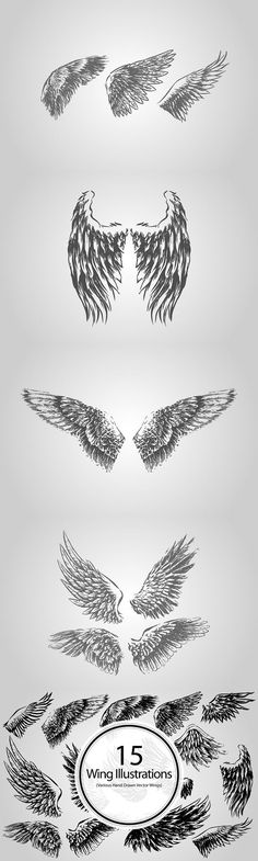 A collection of 15 hand drawn vector wings. Saved in EPS format, compatible with most vector programs. Wings Sketch, Demon Wings, Ajin Anime, Flying Pig, Graphic Design Print, Anime Eyes, Couple Tattoos, Drawing Tips, Drawing Tutorials