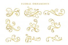Collection set of label ornament vector illustration Vector Logo Floral, Mother's Day Photos, Vector Free Download, Vector Photo, Photo Craft, Presentation Templates, Flourish, Free Design, Design Ideas