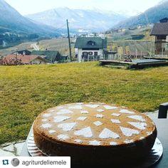 #Repost @agriturdellemele  Una dolce merenda per campioni @sciclubpejotonale