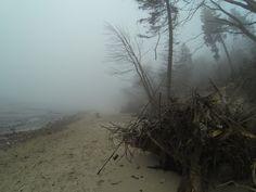 Rozewie Beach